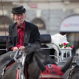 coachman from Prag by Jana Vondráčková - City,  Street & Park  Street Scenes