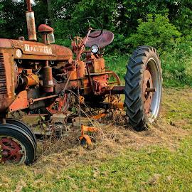 Farmall by Howard Mattix - Transportation Other ( tractors, art objects, farm equipment, transportation, antiques )