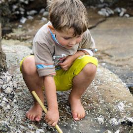 Rockpool fun by Morne Kotze - Babies & Children Children Candids