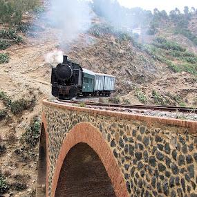 by Alister Munro - Transportation Trains