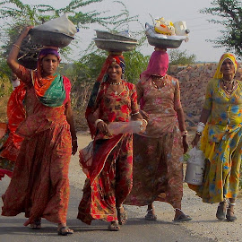 VILLAGE WOMEN by Doug Hilson - People Group/Corporate ( rajasthan, india, women )