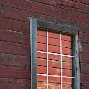 red window by Gale Perry - Buildings & Architecture Architectural Detail ( illuminated, old, barn, red window, sun,  )