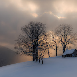 serenity by Jeno Major - Landscapes Prairies, Meadows & Fields ( hills, winter, sunset, cottage, landscape )