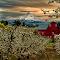 DSC_2744_HDR-Edit.jpg