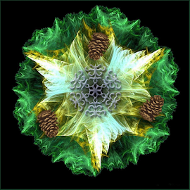 The Trinity Wreath by Nancy Bowen - Illustration Holiday ( black background, pine cones, snowflake, wreath, 3 point star )