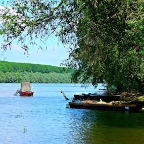 The Danube River by Ivan Mendes - Landscapes Waterscapes ( sky, forest, green, nature, danube, boats, sun, trees, croatia, sunlight, blue, fish, vukovar, river, fisherman )