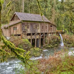 The Grist Mill by Debbie Slocum Lockwood - Buildings & Architecture Public & Historical