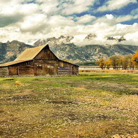 Grand Teton Moulton Mormon Barn by Norma Brandsberg - Buildings & Architecture Decaying & Abandoned ( stormy, photograph, mountain, www.elegantfinephotography.com, yellowstone national park, wyoming, photographed, leaf, yellow, leaves, storm, farmer, barn, grand, autumn, photographer, light, orange, horizon, flats, dusk, homestead, row, vacation, brandsberg, antelope, scene, ansel adams, thing, america, ventre, most, road, landscape, sun, farm, jackson, cloudy, rust, top, hole, afternoon, green, gros, scenic, photo, prairie, elk national preserve, mormon, shed, yellowstone, national park, t.a moulton, color, changing, fall, vista, cloud, norma, scenery, jackson hole, most visit, teton, grand teton national park )