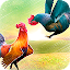 Wild Rooster Run - Frenzy Chicken Farm Race