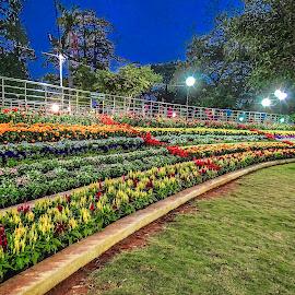 Botanical garden by Deva Vinoth - City,  Street & Park  City Parks