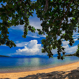 A place in the shade by Richard ten Brinke - Landscapes Beaches