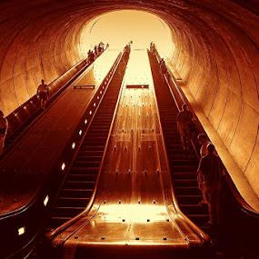 Pergatory's gates by Gene Myers - Buildings & Architecture Other Interior ( pergatory, washington, monochrome, escalators, metro, people,  )