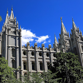 Salt Lake Temple by Tony Huffaker - Buildings & Architecture Places of Worship ( temple, building, utah, wide-angle, salt lake temple, worship )