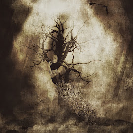 spirit by Kathleen Devai - Digital Art People ( fantasy, sepia, tree, woman, art, surreal )