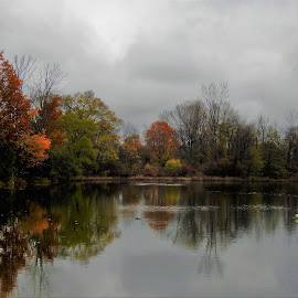 Peaceful reflections at a city park in Belaire, MI by Kathy Woods Booth - City,  Street & Park  City Parks ( orange, reflection, park, cloudy, reflections )