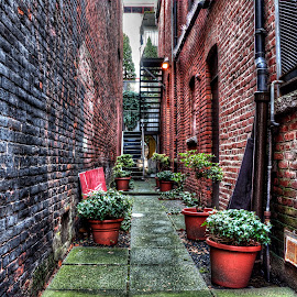 by Peter Murphy - City,  Street & Park  Historic Districts