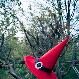 Witches hat in nature by Denny Gruner - Artistic Objects Clothing & Accessories ( nobody, twigs, single, decorative, bright, clothing, simple, one, wizard, object, hat, fantasy, mystic, pointy, nature, magician, celebrate, branches, decoration, witchcraft, mage, fun, red, witch hat, pointy hat, natural )