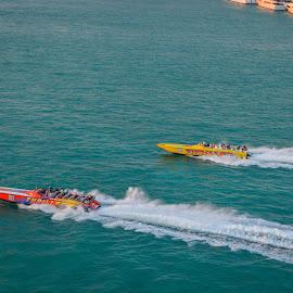 Race by Rebekah Cameron - Sports & Fitness Other Sports ( water, speedboats, speed, racing, ocean )