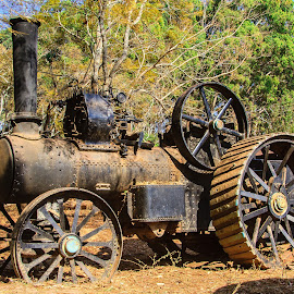 Steam Traction Engine by Simon Shee - Transportation Other ( steam engine, machinery, zambia, ttransportation, africa, shiwa ngandu,  )