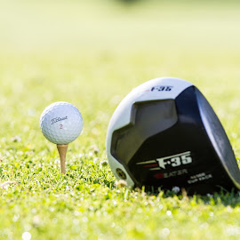 Tee Time by Rob Casagrande - Sports & Fitness Golf ( dimpled, golf course, golf ball, golf, driver, tee time )