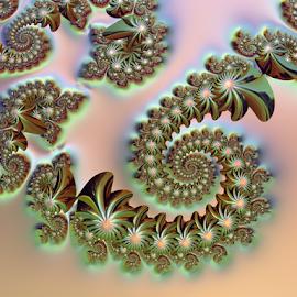 Flower Swirl by Cassy 67 - Illustration Abstract & Patterns ( swirl, digital art, spiral, fractal, flowers, digital, fractals )