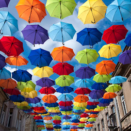 Umbrellas by Maja Tomic - City,  Street & Park  Street Scenes ( umbrella )