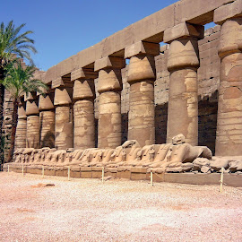 Karnak - Luxor.Egypt by Jerko Čačić - Buildings & Architecture Public & Historical