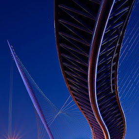fish bridge II by Ryo SiNaga - Buildings & Architecture Bridges & Suspended Structures