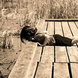 Getting a closer look by Pam Kissner Sheedy - Babies & Children Children Candids ( cattails, little boy, marsh, pier, swamp, rollins savanna  preserve )