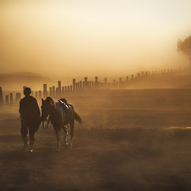 I Am Not Alone by Tien Sang Kok - Landscapes Travel ( foggy, nature, horse, moody, travel, sunrise )