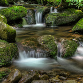 Cascading Water by Ross Boyd - Landscapes Waterscapes ( mountains, nc, creeks, streams, smokey mountains )