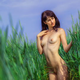 Summer by Dmitry Laudin - Nudes & Boudoir Artistic Nude ( field, nude, girl, sky, grass, summer, hair, sun )