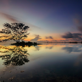Lonely Tree by Choky Ochtavian Watulingas - Landscapes Travel ( clouds, seashore, clouds and sea, low tide, reflections, long exposure, seascape, skies, island )