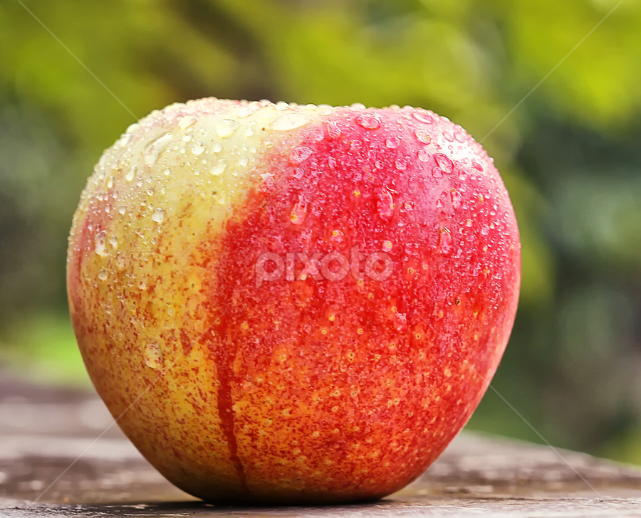 two colors by Ismed  Hasibuan  - Food & Drink Fruits & Vegetables ( two, red, foods, color, apple, fruits, yellow )