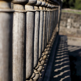 Array by Jitesh Patil - Buildings & Architecture Architectural Detail ( contrast, wooden, indian, historical, shadows, pillars )