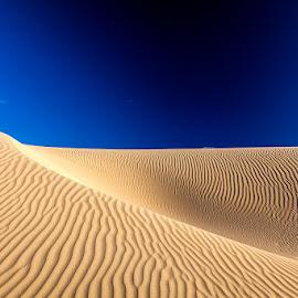 Dunes by Timo Bierbaum - Landscapes Travel ( sand, dunes, perth, nature, australia )