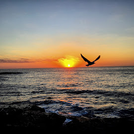 Sydney Sunrise by Angela Taya - Novices Only Landscapes (  )