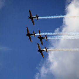 Lima Lima by Robin Smith - Transportation Airplanes ( aviation, airplane, people, air show )