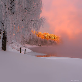 Winter Light by Rose-marie Karlsen - Landscapes Sunsets & Sunrises ( winter, nature, snow, sunrise, landscape, light, norway,  )