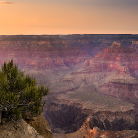 Grand Canyon at sunset by Karl Erik Vasslag - Landscapes Deserts ( hill, mountain, desert, landscape, usa, grand canyon, national park, sunset, arizona, vista, southwest, southwestern usa, hike )