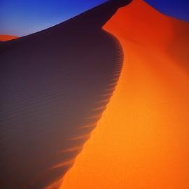 Zagora by Jean Luc Julien - Nature Up Close Sand