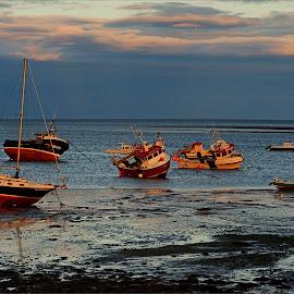 Holy Island by Bob Rawlinson - Transportation Boats ( farnes )