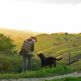 Making New Friends on a Hike by Kristen Beitzel - Landscapes Mountains & Hills ( hills, dogs, california, sunset, relax, tranquil, relaxing, tranquility )