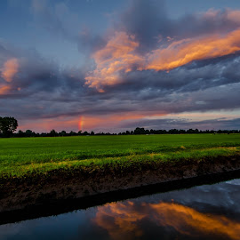 evening in paddy by Stefano Pretti - Landscapes Sunsets & Sunrises ( nature, evening in paddy )