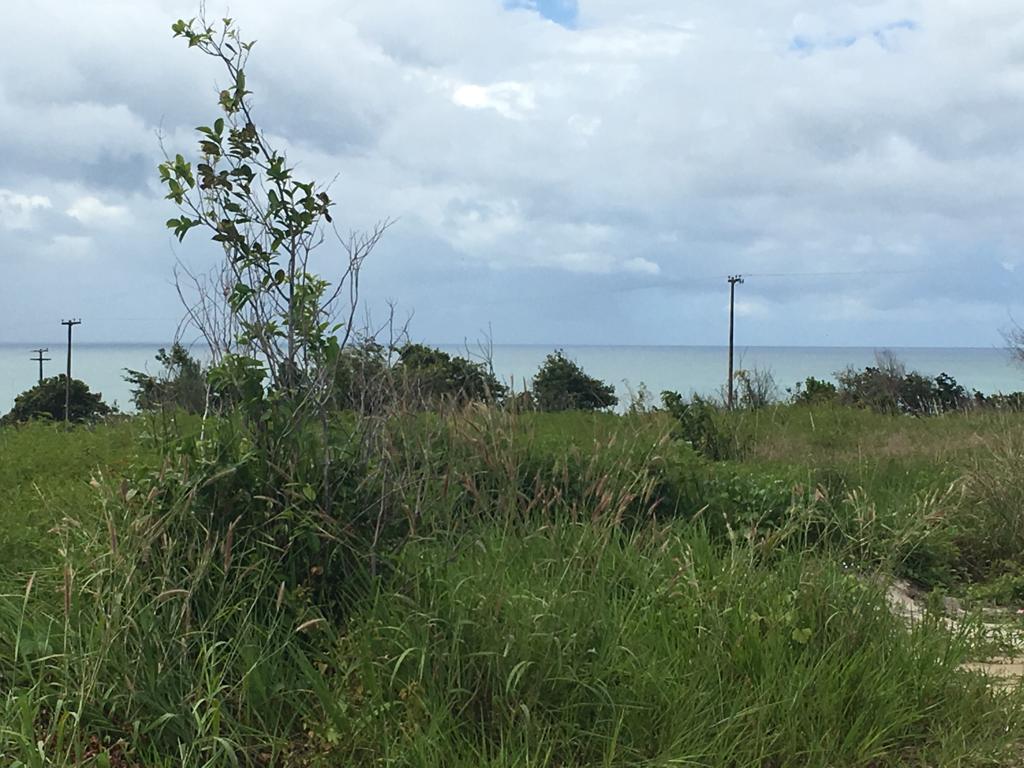 Terreno à venda, 450 m² por R$ 60.000 - Loteamento Barra do Estoril - Pitimbú/PB