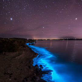 Trail of Blue by Leoni Williams - Landscapes Waterscapes ( water, blue, sea sparkles, bioluminescence, milky way )