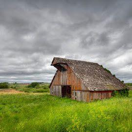 Timeless by Ken Smith - Buildings & Architecture Decaying & Abandoned ( iowa, barn, landscape )