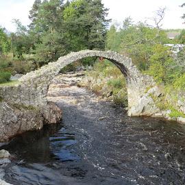 Carrbridge by Janet Matthews - Buildings & Architecture Bridges & Suspended Structures