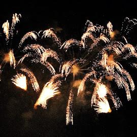 Fireworks by Suresh K Srivastava - Abstract Fire & Fireworks ( star like sparkle, night photography, celebrations, fireworks, night shot )