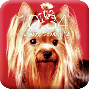 Download Yorshik Yorkshire Terrier  Lock Screen For PC Windows and Mac